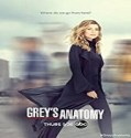 Nonton Serial Greys Anatomy Season 17 Subtitle Indonesia