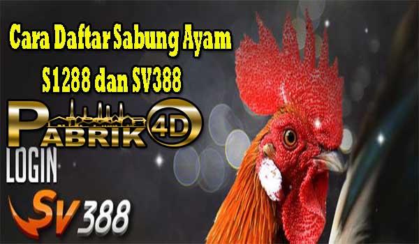 Cara Daftar Sabung Ayam S1288 dan SV388