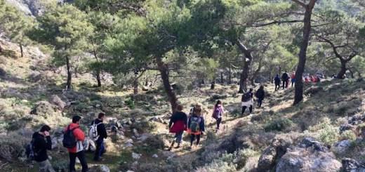 Πεζοπορία στη Θρυπτή με τον Ορειβατικό Σύλλογο