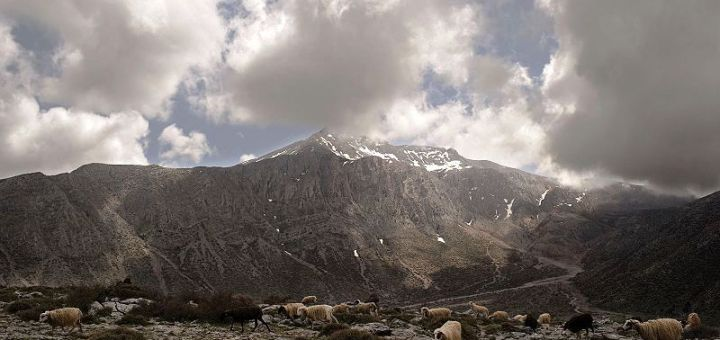 Ανάβαση στην κορυφή Σκαφιδαράς
