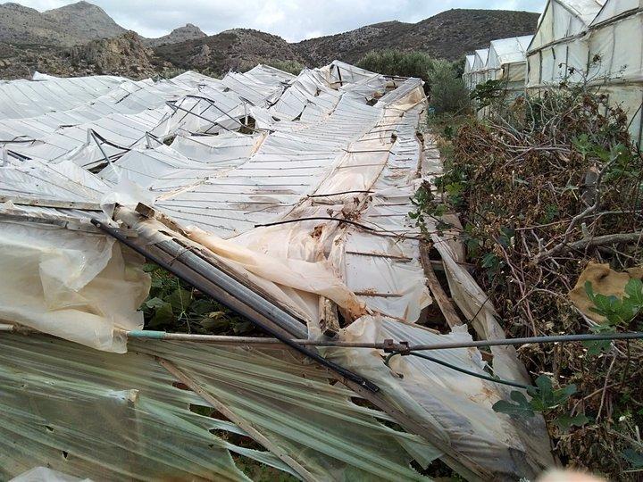 Απολογισμός ζημιών σε αγροτικές περιουσίες, Ιεράπετρα
