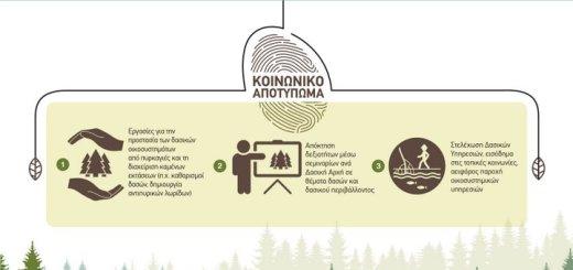 49 θέσεις στο Λασίθι για την Αντιπυρική προστασία των δασών