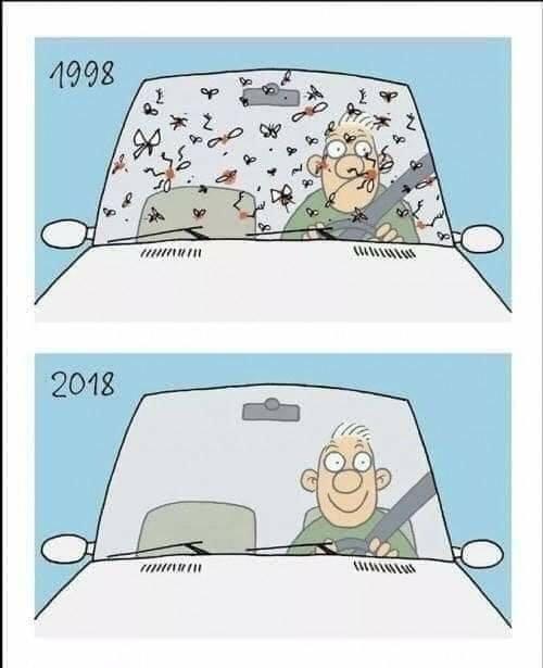 Τι έγιναν τα έντομα από τα παρπρίζ των αυτοκινήτων