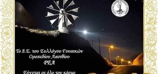 Σύλλογος Γυναικών Οροπεδίου Λασιθίου Ρέα, νέο ΔΣ