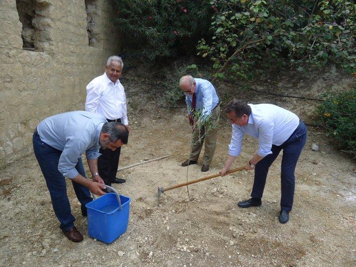 ο περιφερειάρχης και οι δήμαρχοι Ηρακλείου, Μαλεβιζίου και οροπεδίου Λασιθίου φυτεύουν την ελιά έξω από τη στοά