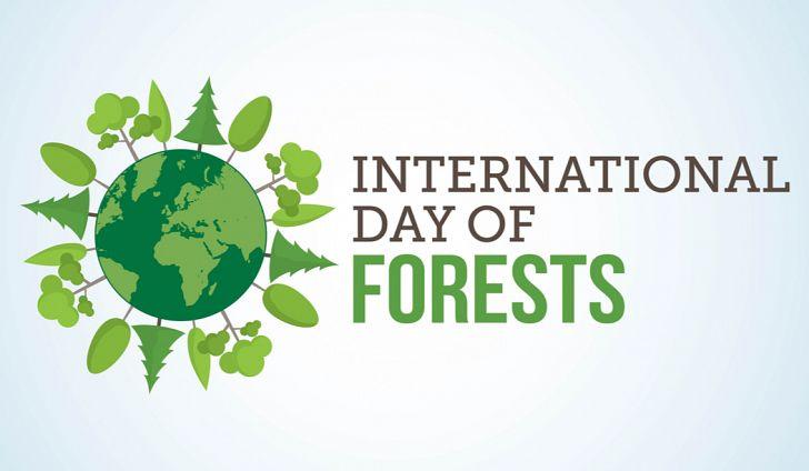 Το ΚΚΕ για την παγκόσμια ημέρα Δασών, 21 Μαρτίου
