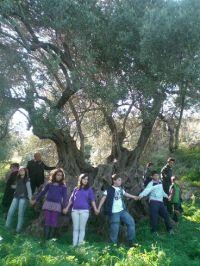 Γύρω από την ιστορική ελιά στον «Κέρκελο» Βενεράτου τα παιδιά των μελών των πολιτιστικών συλλόγων