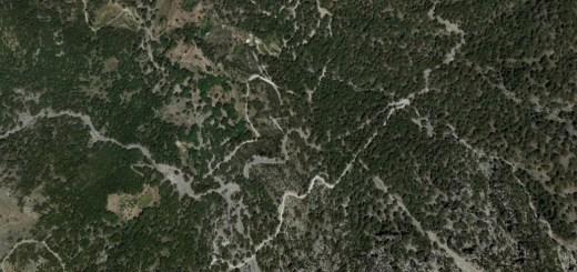 θέματα δασών και περιβάλλοντος σε συναντήσεις συντονίστριας της αποκεντρωμένης