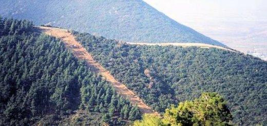 243.000 ευρώ στους Δήμους του Νομού Λασιθίου για δράσεις πυροπροστασίας
