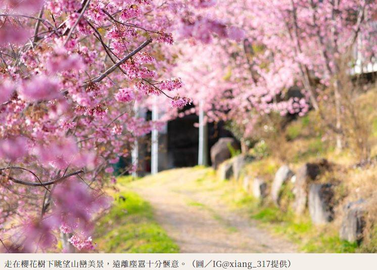 上帝也愛櫻花?上帝部落「司馬庫斯」變身粉紅仙境 夢幻的櫻花隧道!–旅遊快報|頭條最速爆 | 一手掌握 ...