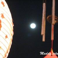 First full moon of the year 2011 兔年之元宵节月圆