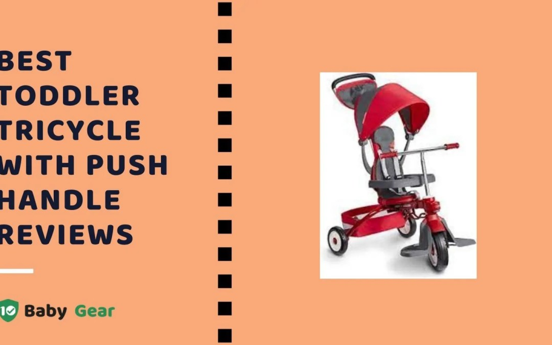 Best Toddler Tricycle with Push Handle Reviews 2021