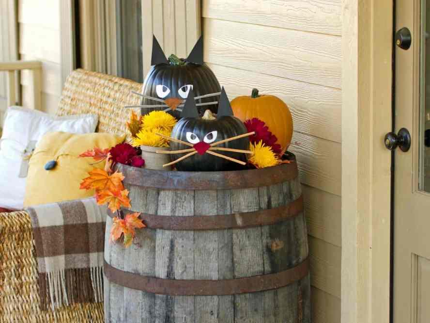 original_Layla-Palmer-Halloween-cat-pumpkin-beauty3_4x3.jpg.rend.hgtvcom.1280.960