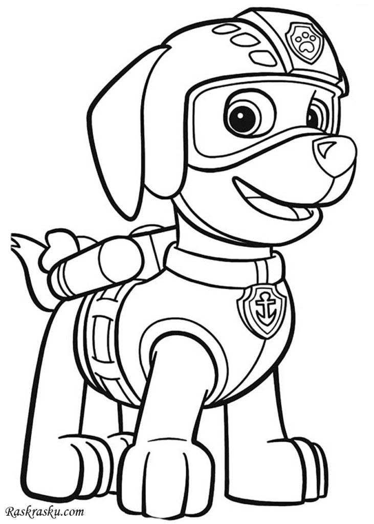 Dibujos para colorear de paw patrol zuma