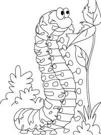 Dibujos de oruga para colorear gratis