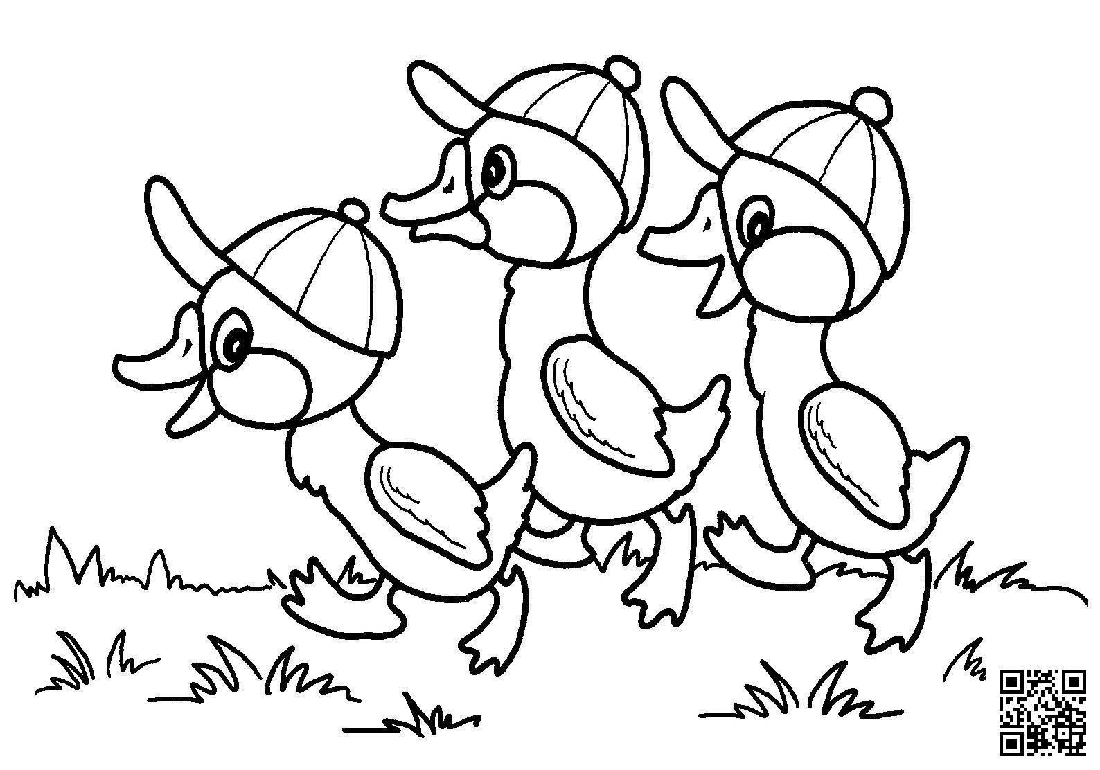 Dibujos De Patos Para Colorear Para Nios