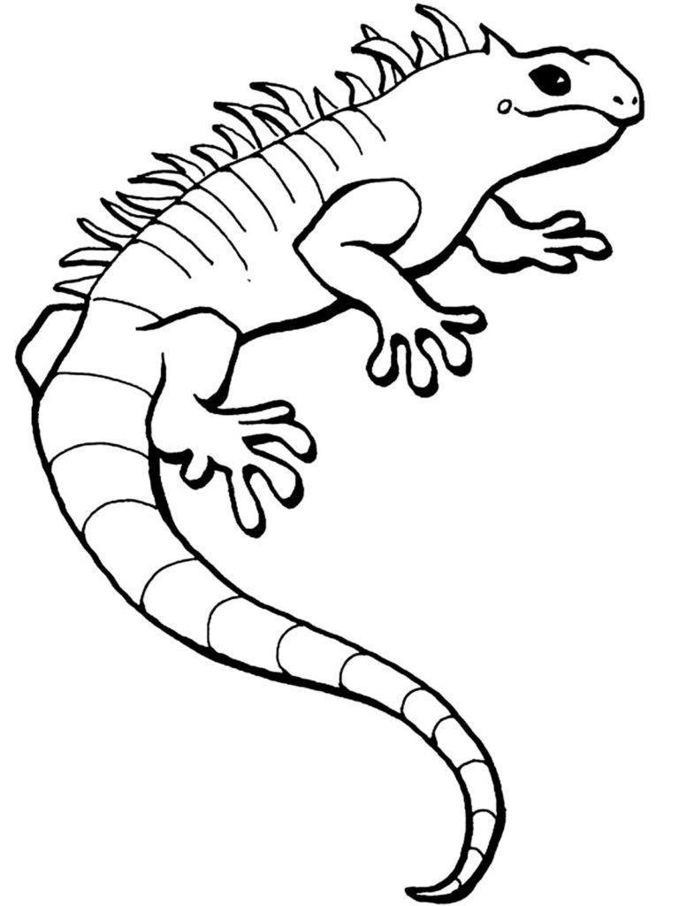Dibujos infantiles de lagartos para colorear
