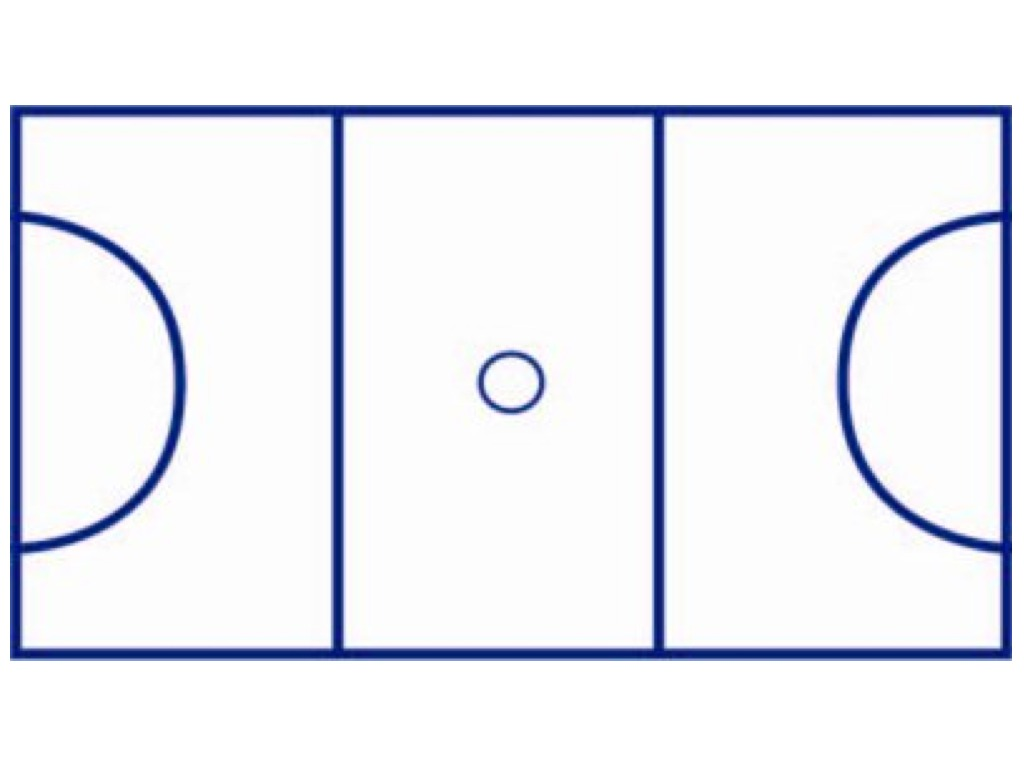 netball court diagram layout sundew plant mandala project nicolle 39s site