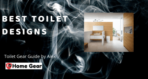 Best Toilet Designs - 10HomeGear.png