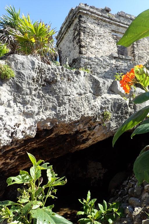 Le temple de la cenote