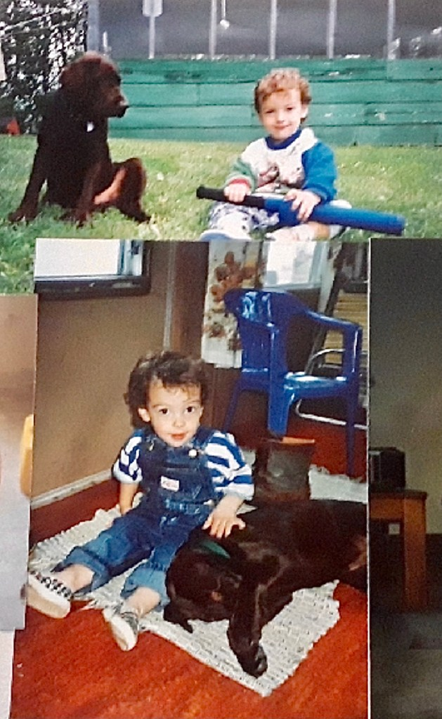 baby veech and his dogs