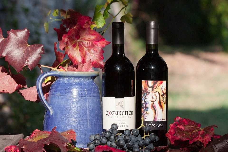kırmızı şarap şişeleri ve siyah üzüm