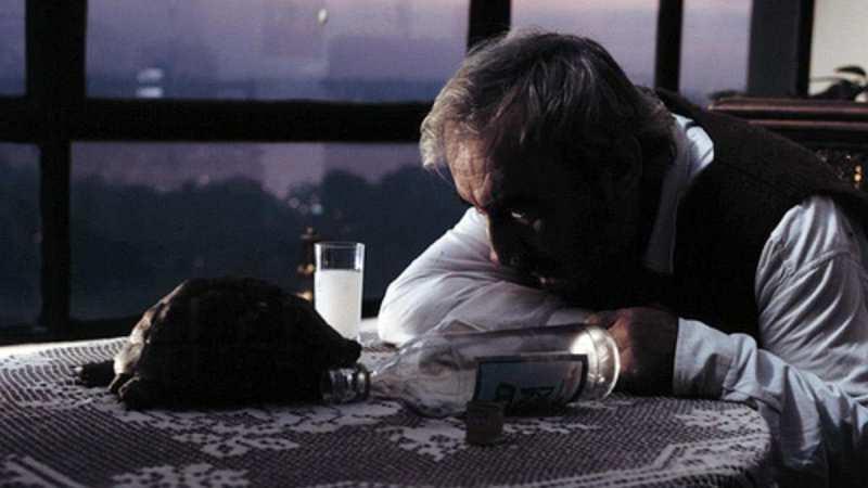 Aşk Filmlerinin Unutulmaz Yönetmeni şener şen