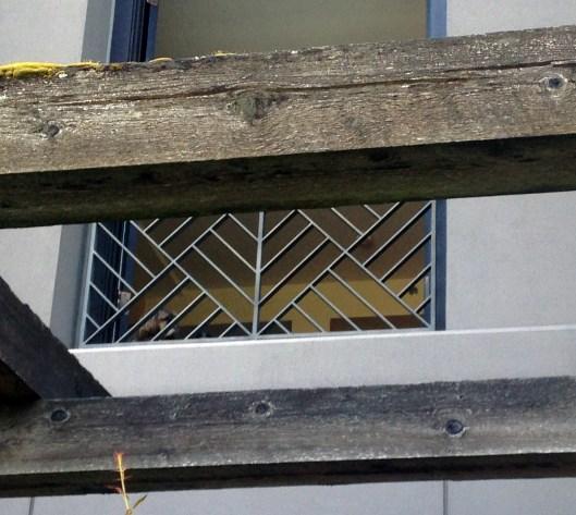 PS_g in window