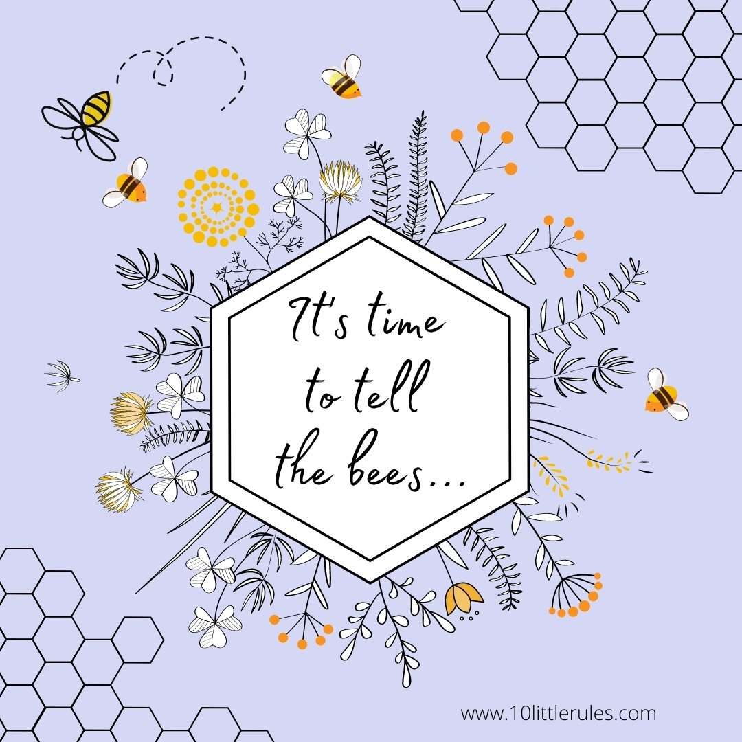 We forgot to tell the bees …