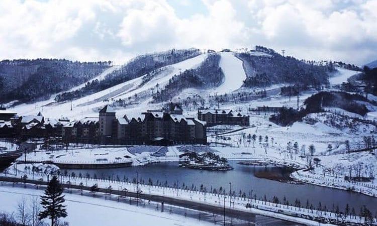 alpensia-ski-snowboard-winter