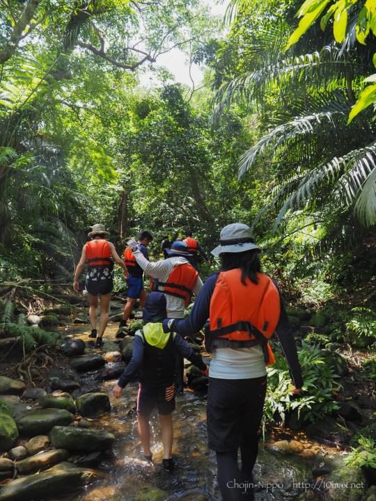 西表島 マングローブ ツアー クーラの滝