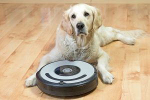 Robot vacuum cleaner with pet