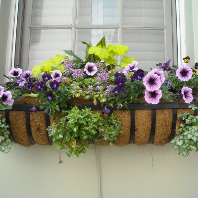 Railing Planter Boxes: New Trend in Outdoor Decorating