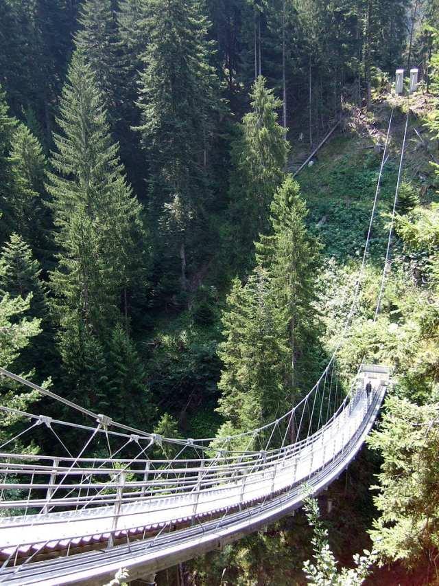 Scariest Rope Bridges In The World: Bridge Traversine, Switzerland
