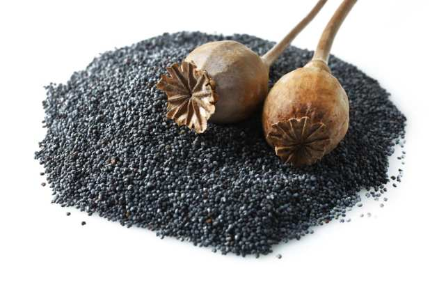 Most Nutritious Seeds - Poppy Seeds