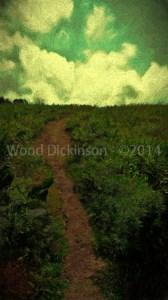 Trail #34
