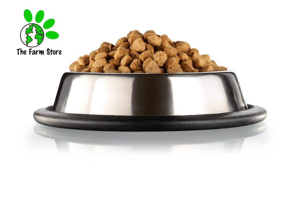 BEST CHEAP DOG FOOD BRANDS