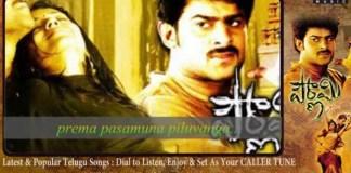 Bharatha Vedamuga Song Lyrics