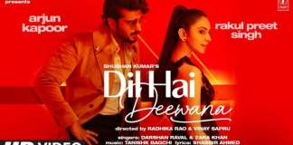 Dil Hai Deewana Song Lyrics