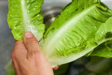 Salade met zomerse dressing van blauwe bessen 12