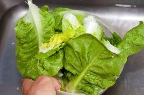 Salade met zomerse dressing van blauwe bessen 22