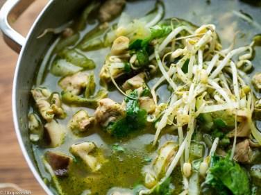 Aziatische groentesoep met kip-17