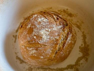 no-knead-bread-een-gemakkelijk-broodrecept-3