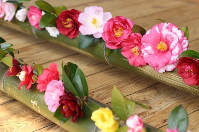 霊鑑寺玄関椿の花