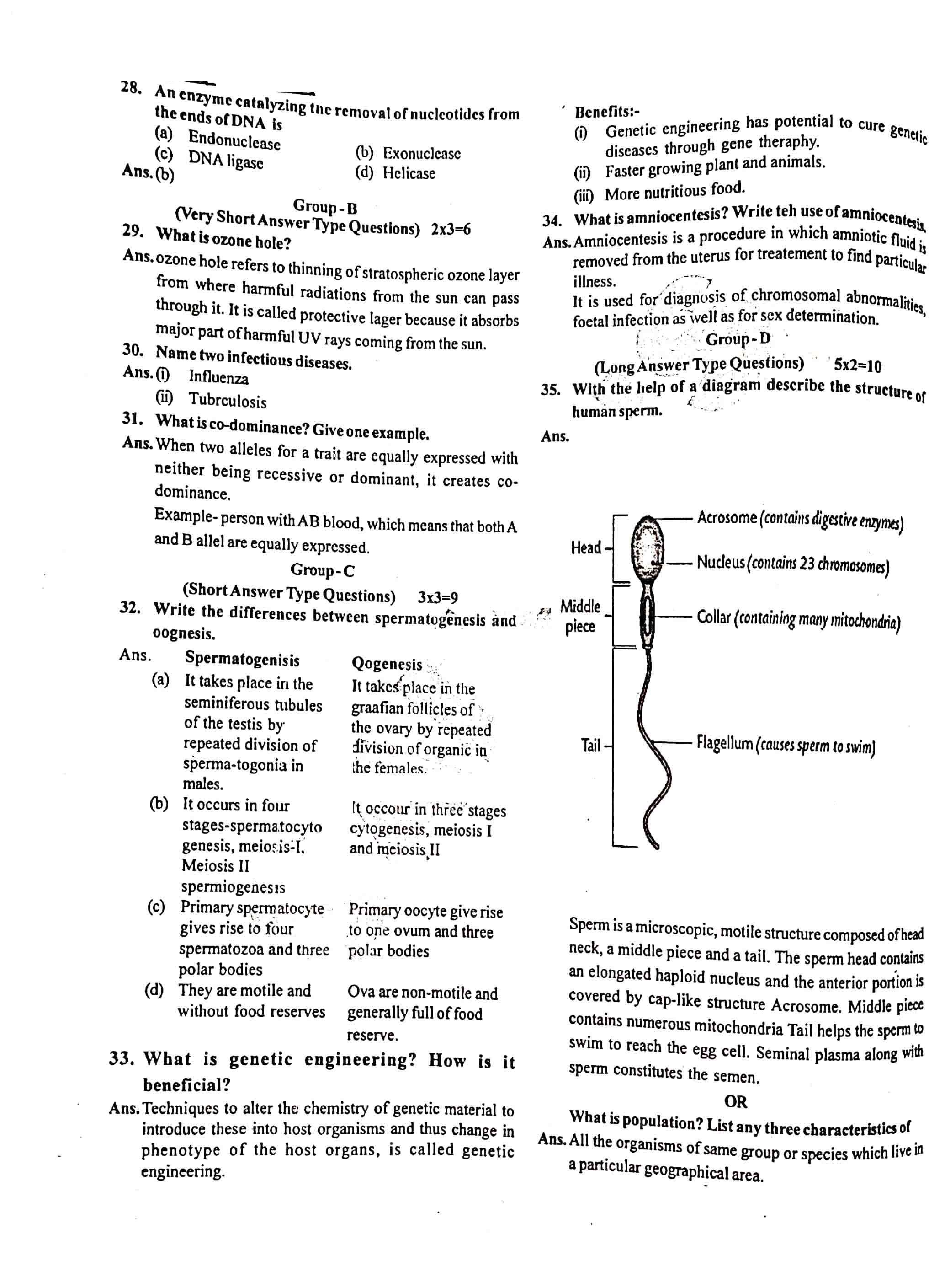 JAC Class 12 Biology Question Paper 2020 with Solution