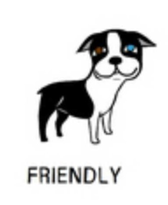 18friendly-e1438913329286