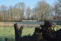 bw_vleermuisbunker600
