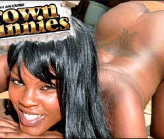 Brown Bunnies Brown Bunnies