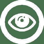LCI_CauseArea_Icons_01a-vision_blc copie 2