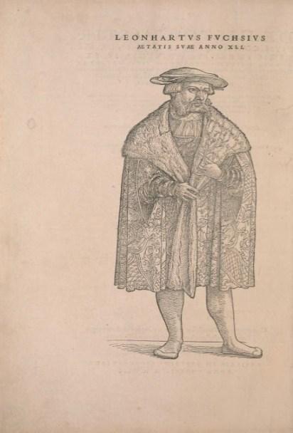 Gravure représentant Leonhart Fuchs au début de l'ouvrage de 1542. Source : Smithsonian Librairies, library.si.edu